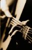 singfolkmusic userpic