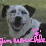 jim_arbuckle userpic