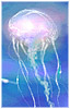 tsuminaki userpic