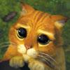 big sad eyes