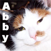 the_cats_miau userpic