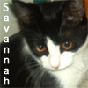 saintpagan userpic
