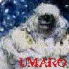 umaro userpic