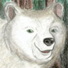 solemn_bear userpic