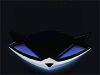 raccoonmask userpic