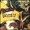 Flamebird - The Ultimate Groupie
