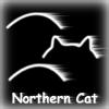 northern_cat