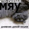 mashustik userpic