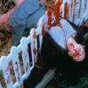 cannibalgirl666 userpic