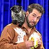 animals, Joey Fatone with animal