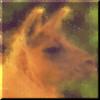 keena914 userpic