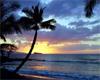 islandbabe4evr userpic
