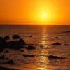 oceanpetal14 userpic