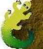 cotton_lizard userpic