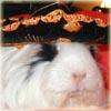 princess_spee userpic