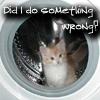 adinaberry userpic