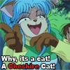 Cheshire Botan