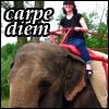velvetfaery userpic