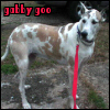 gabbygoo userpic