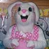 rabbit_evil userpic