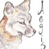 aegis_fox userpic