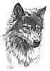 wolf1_BW