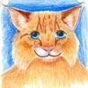 tiggycat userpic