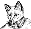 the_rain_fox userpic