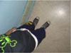 __movingunit userpic