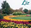 jardin_de_joie userpic