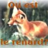Ou est le renard?