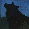 wolf_at_sunset userpic