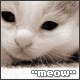 tabcat userpic