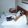 laptop officedog