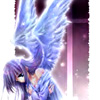 little__bird userpic