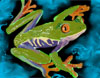 frogs_n_turtles userpic