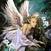 Fairy/Angel