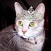 princessmistie userpic