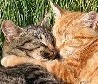 Mursyanya: kittylove