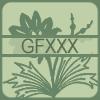 gfXXX
