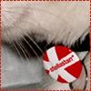 ooders9 userpic
