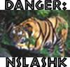 nslashk userpic