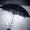 emmavescence: rain