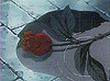 torngemini userpic
