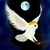 arliss: ancient wisdom owl moon