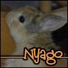 nyago_ren userpic