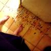 spider_dancer userpic