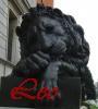 catgurl08 userpic