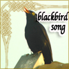 blackbird_song