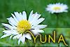 yuna87 userpic